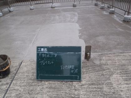 PB130016.JPG